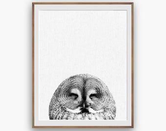 Owl Print, Owl Decor, Owl Wall Art Decor, peekaboo print, Nursery Art, Digital Download, Large Printable Poster, Forest Animals