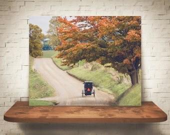 Amish Buggy Fall Photograph - Fine Art Print - Wall Decor - Farm House Decor - House Warming Gifts - Wall Art - Country Decor - Dirt Roads