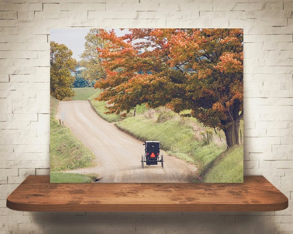 Amish Buggy Fall Photograph - Fine Art Print - Wall Decor - Farm House Decor - House Warming Gifts - Wall Art - Country Decor - Dirt Roads