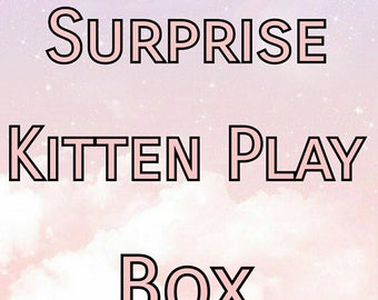 Surprise Kitten Play Box
