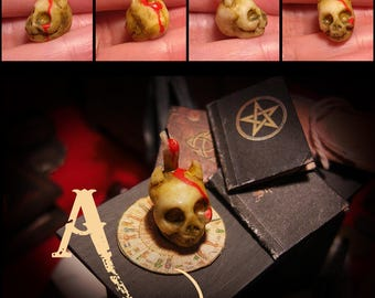 Miniature skulls . dollhouse miniature, Skulls for rituals with candles or Pentacle, human,demon, Fake Taxidermy  1/12