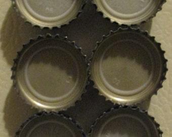 Bottle Cap Magnets- Set of 6