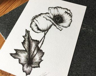 Poppies A5 Print- Limited Edition