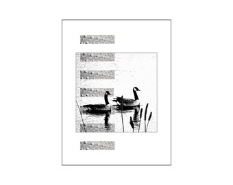 Nature Art Print, Birds Canadian Geese Goose, Minimalist Modern Interior Decor. Poster Wood Panel Canvas, Pacific Northwest Black Gray White
