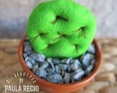 CACTUS PEQUEÑO/ Luka Thepau/ cactus decorativo