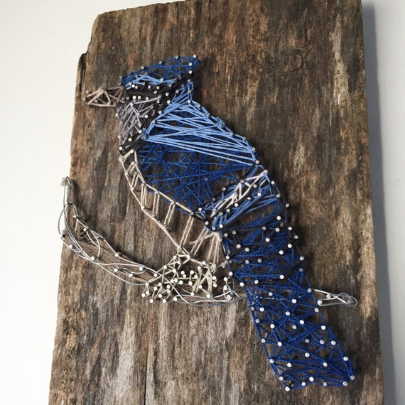 Blue Jay on Ontario Barn Board with Wire Detail