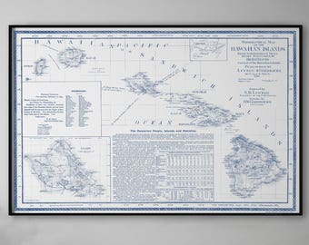 Hawaii Map, Topographical Map, Hawaii Poster, Hawaii Sign, Hawaii Wall Art, Hawaii Sign, Hawaii Art, Hawaii, Hawaiian Islands, 159