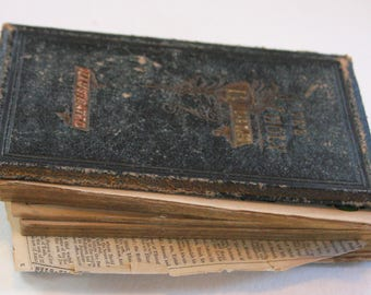 Antique Illustrated Bible
