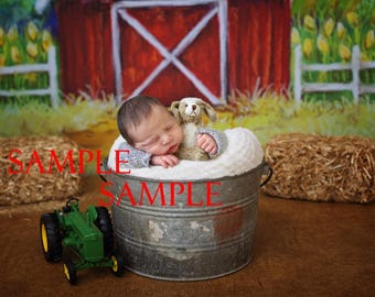 newborn digital backgrounds/composite
