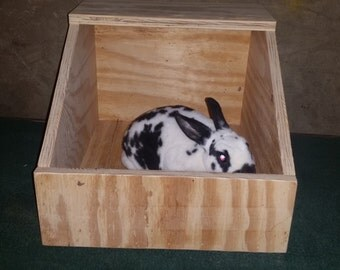 large bunny rabbit breeding nest box Rex/NZW/lop/rabbit cage supplies/bunny box/bunny boutique