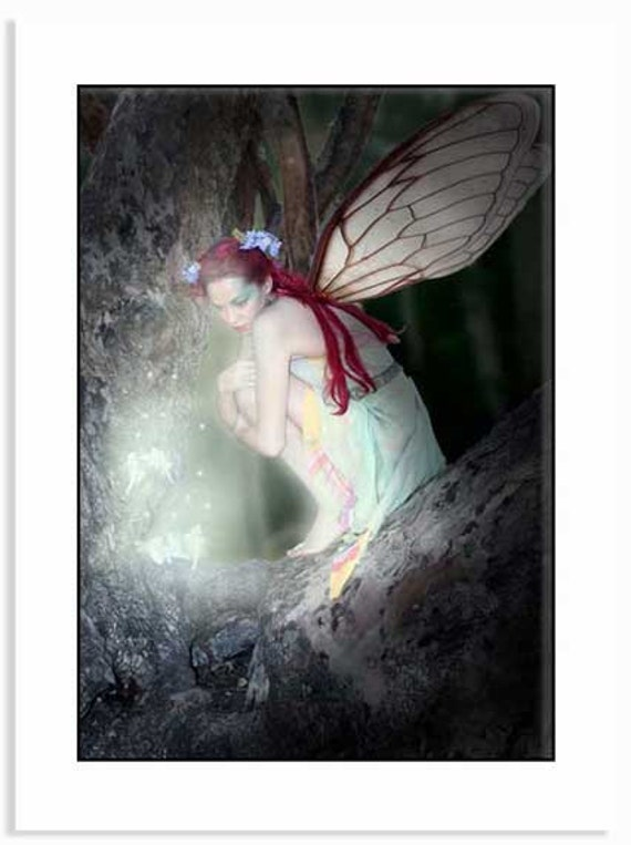 FAIRY MEETING 2, Fairy night time scene, Fantasy, Fairy, Forest, Fae,