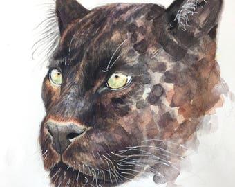 Black Leopard Study in Watercolor