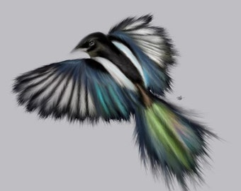 One for Sorrow- Digital Print