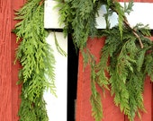 Christmas Garland, Fresh Cedar Garland, Real Greenery, Garland for Mantel, Fireplace Swag