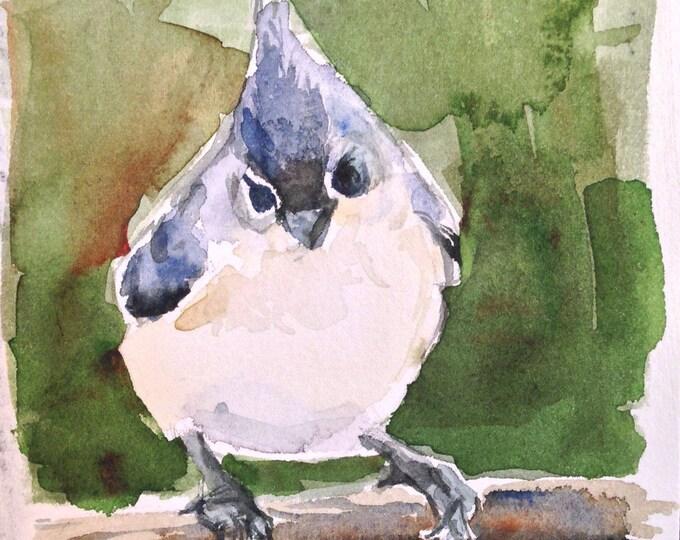 4 x 6 Grey Titmouse Watercolor Painting , Original Grey Titmouse Painting, Grey Titmouse No. 102,  Watercolor Titmouse,  Brande Arno Art