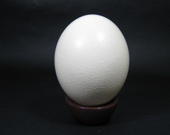 ONE (1) Ostrich Egg Shell on a Stand
