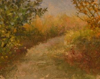 Lillie Park Path