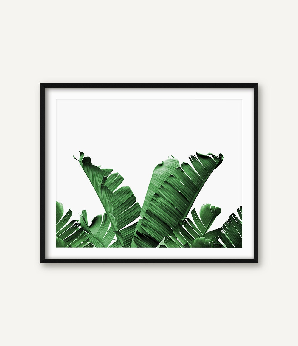 Palm leaf wall art banana leaf wall art botanical art palm for Leaf wall decor