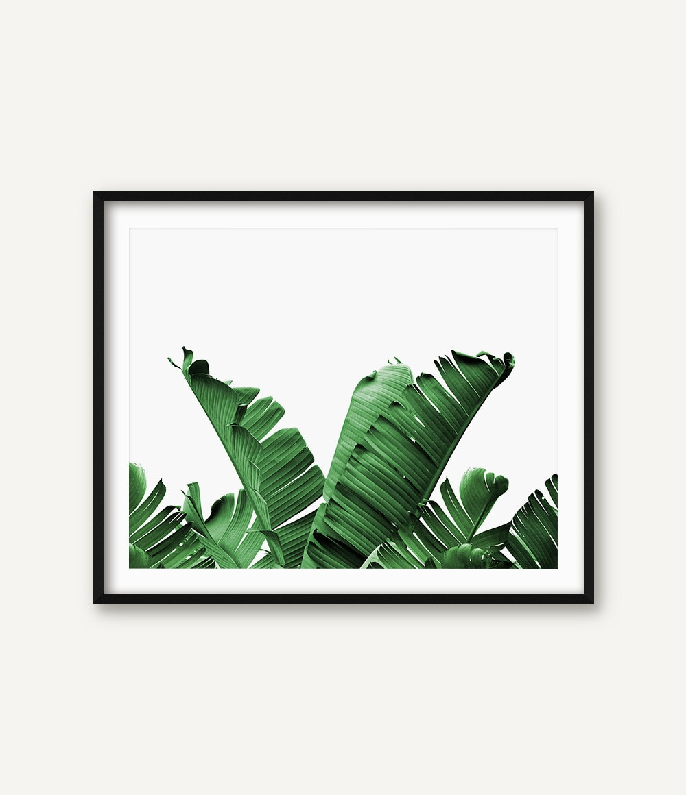 Leaf Wall Decor Palm Leaf Wall Art Banana Leaf Wall Art Botanical Art Palm