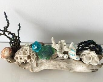 drift wood, statue, coastal, coral, seashells, nautical decor