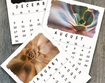 Instant Download Calendar, Photography Calendar, Succulent Monthly Calendar, 2017 - 2018 Printable Calendar, Wall Calendar Printable