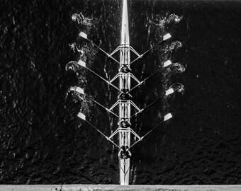 Row! - 16x24 Metal Photo Print