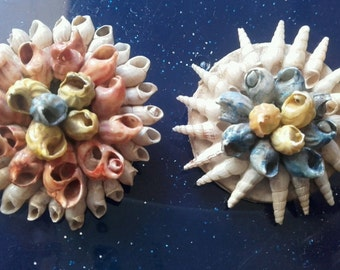 70 vintage brooches with shells
