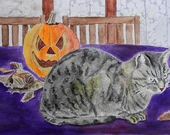 The cat on Halloween