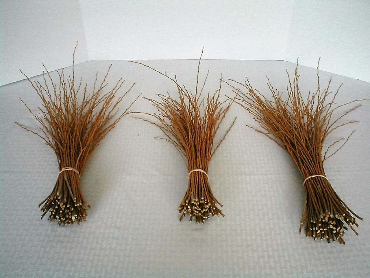 willow branches for crafting wood branch willows rustic 7 00