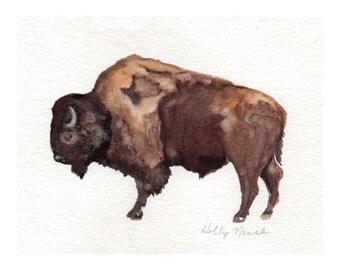 American Bison-Original Watercolor