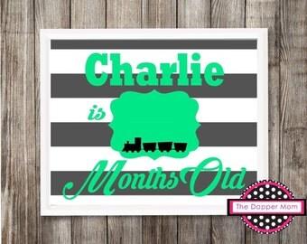 Train Theme Baby Update/Digital Milestone/Monthly Milestone/My First Year Prop/Milestone Prop/Girlie Photo Prop/Striped Nursery/Dry Erase