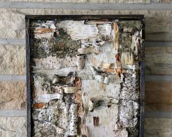Michigan Birch, Birch Bark Wood Art, Contemporary Art, Abstract Art, Found Objects, Nature, Trees, Michigan, Michigan Art, Wood art, wood
