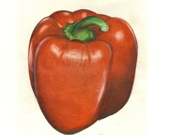 Red Bell Pepper- Print