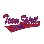TeamSpiritTransfers