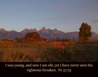 Inspirational photo I was young, and now I am old, yet I have never seen the righteous forsaken