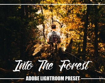 Adobe Lightroom Into the Forest mood Premium Preset for Lightroom 4,5,6 and CC