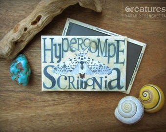 Magnet Hypercompe scribonia Butterfly moth with watercolor