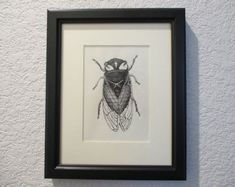 Cicada Insect Ink Drawing