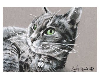 Custom Cat Portrait, Pet portrait, Cat Drawing, Cat art, art by Karly Marie
