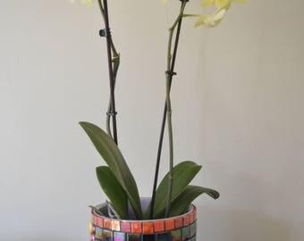 mosaic planter, ceramic pot