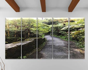 Nature Trail in Hawaii- Canvas Wall Art photo, canvas printing, Hawaii canvas art 1, 2, 3 or 4 panel option- photography to canvas prints
