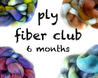 PLY fiber club / hand painted luxury wool roving for spinning or felting / customizable / 6 month membership / pancake and lulu fiber club