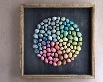 Rainbow speckled plaster egg framed wall art: handmade in Australia by Kuberstore