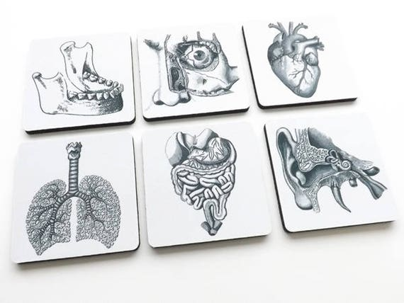 Medical School Graduation Gift drink coaster set goth decor jaw eye ear lungs heart ophthalmologist optometrist pulmonary gastroenterologist