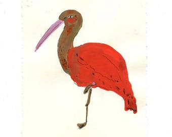 Scarlet Ibis, painting on paper