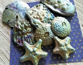 81. Raku Wondrousstrange Urchin Seastar Sand Dollar   Inspired Cabochons Blue Silver Rust Gold Magenta  Collection