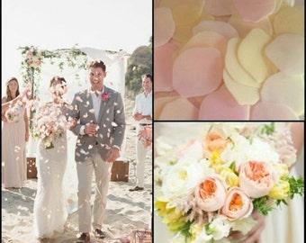 Confetti Rice Paper Petals  DISSOLVE IN WATER - Pastel Colours - Vintage Pretty