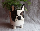Ceramic French Bulldog Planter in Stoneware - Made to Order