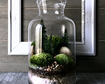 Winter Woodland Forest Scene Terrarium with Pine Trees