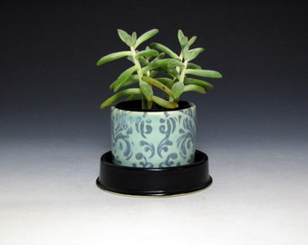 Turquoise and Black Succulent Planter with Damask Pattern